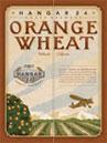 Hangar 24 Brewery - Hangar 24 Orange Wheat