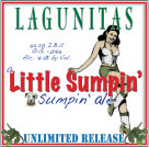 Lagunitas Brewing Co. - Little Sumpin' Sumpin' Ale